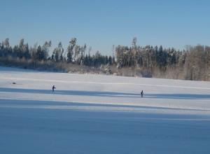 Winter 2010 2011 015